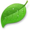 Coda — разработка Web на платформе Mac