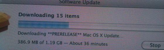 Бета-тестер поневоле или некоторым уже доступно обновление Mac OS X 10.6.3